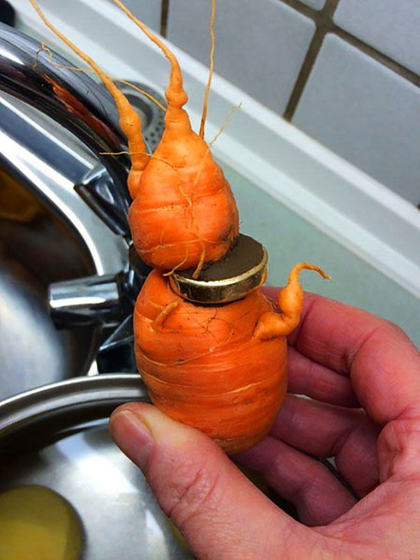 82-letni dziadek znalazł swoją zgubioną obrączkę na marchewce z własnego ogrodu