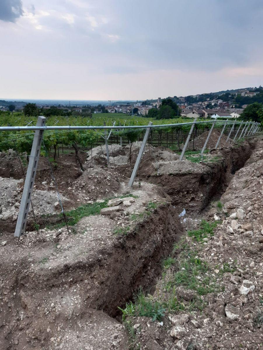Archeolodzy znaleźli rzymską mozaikę podłogową na terenie winnicy w Weronie