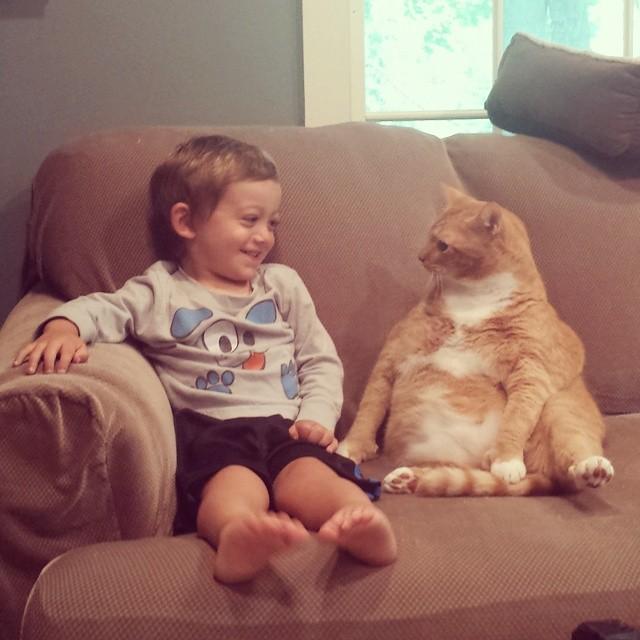 Porzucony kot został opiekunem małego chłopca, wszędzie podążając za nim