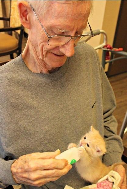 Schronisko dla zwierząt współpracuje z domem opieki, aby pomóc zarówno osobom starszym, jak i kociętom-sierotom