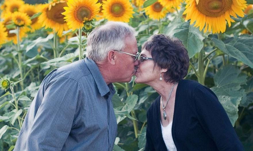 Mężczyzna zasadził 160 hektarów słonecznika na pamiątkę swojej żony, której nie ma już wśród nas