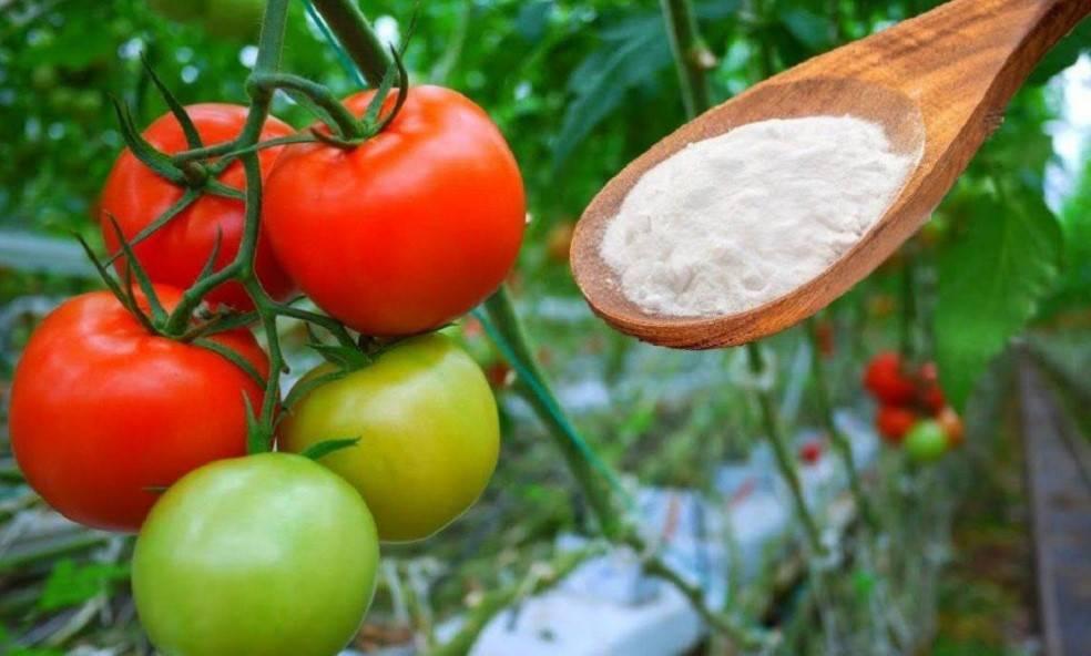 Soda to uniwersalny środek, który daje ogromne korzyści każdemu ogrodnikowi